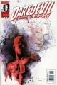 Marvel Knights: Daredevil #22